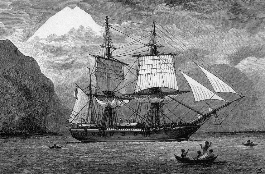Meet the Crew of the HMS Beagle