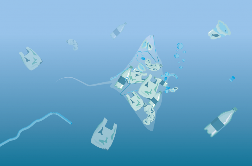 Exploring Ocean Plastics – A Home and School Learning Resource